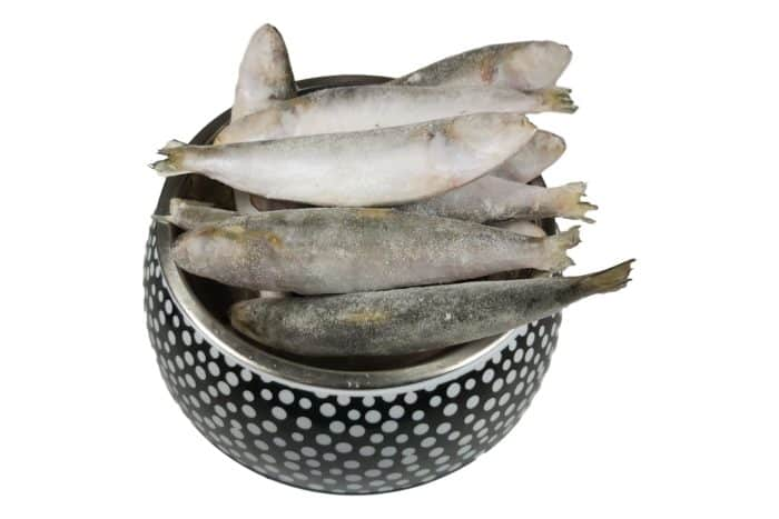 Whole Pilchards 1kg